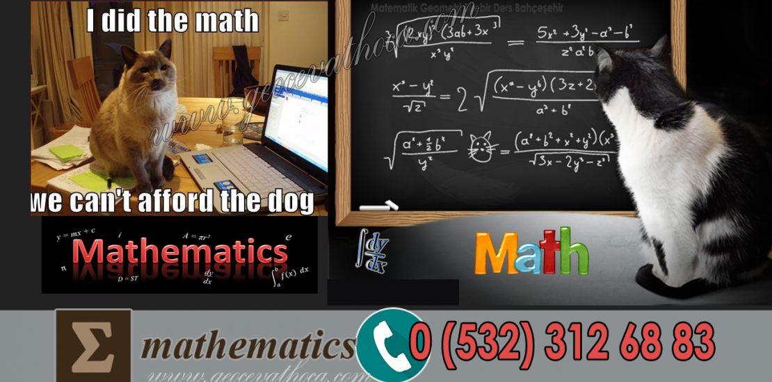 Matematik Geometri Birebir Ders Bahçeşehir
